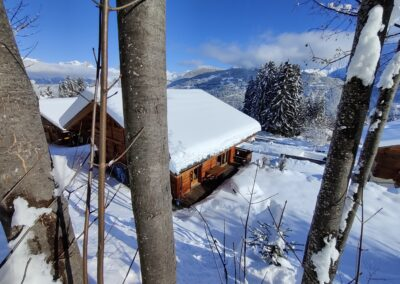 Chalet Ibex - Garden and view in Winter